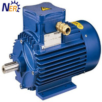 cheap price electric induction DC 100kw motor