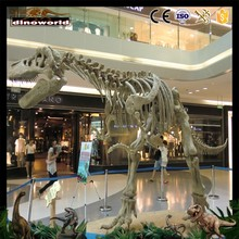 China manufacturer theme park skeleton show dinosaur with good quality