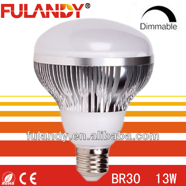 Ecosmart 16-watt (65w) Daylight R30 Cfl Light Bulb