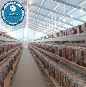 Guangzhou Above 95% egg production Chicken battery cage design for poultry farm(Guangzhou Factory)