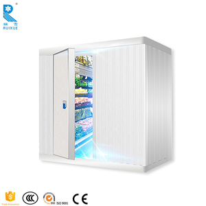 Citrus Fruits And Green Banana Ripening Cold Room With Pu Panels In China
