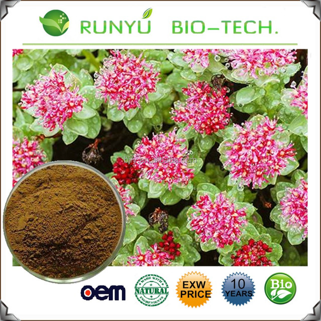 rhodiola herbSource quality rhodiola herb from Global rhodiola