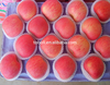 2016 hot sale high sugar content red big Fuji apples fresh apples