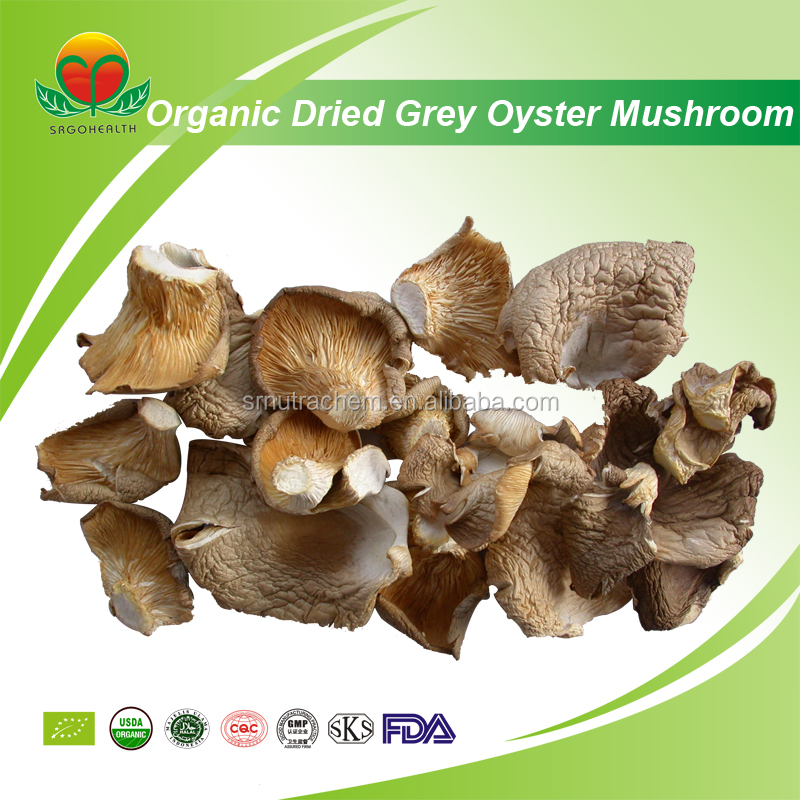 Competitive Price Organic Dried Grey oyster mushroom