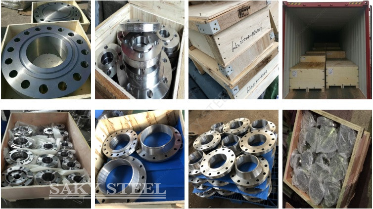 Stainless Steel Lapped Flanges Package