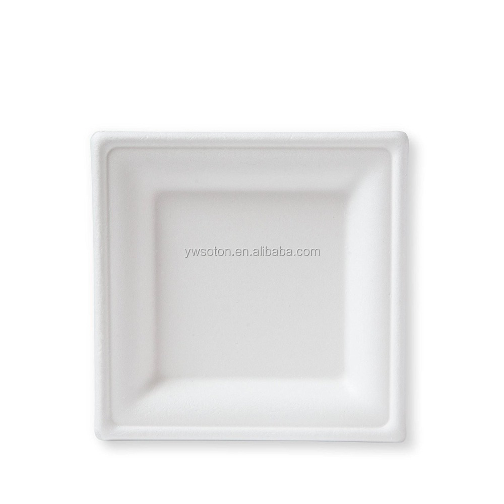 Square Compostable Sugar Cane Plate for Dessert ,Dinner Plate