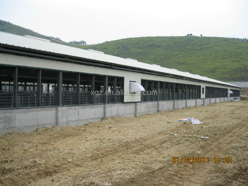 hot selling advanced automatic steel structure poultry farming shed in africa