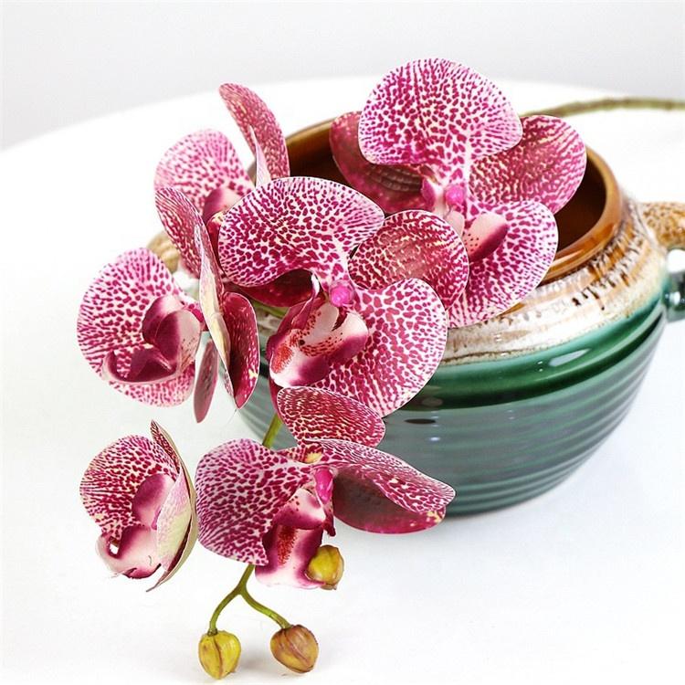 Москва купить оптом цветы орхидеи, букет тюльпанов мимозы