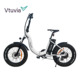 20 Inch 48V 500W Fat Tire Folding Electric Bicycle (V-SF20)