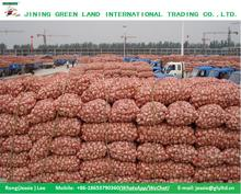 SUPPY NEW CROP GRADE A GARLIC FACTORY PRICE GARLIC FROM CHINA