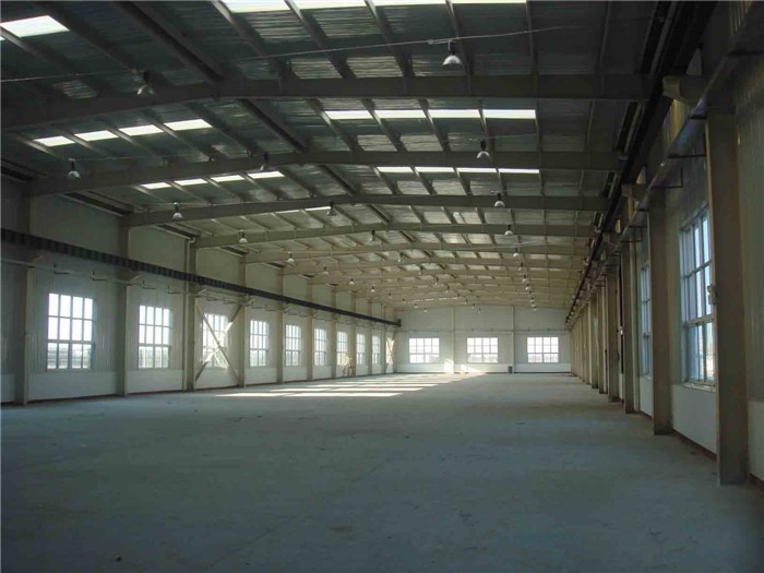 Low Cost Long Span Steel Construction Light Warehouse Building