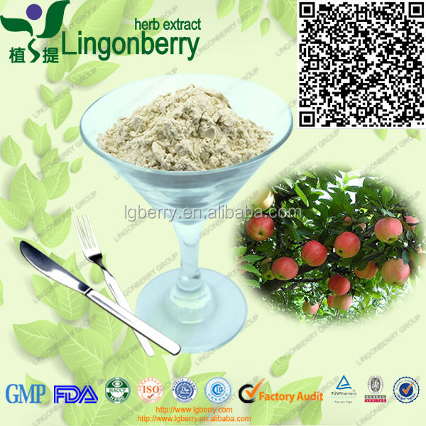 100% Natural Apple Extract/Apple Tree Root Extract Phloridzin