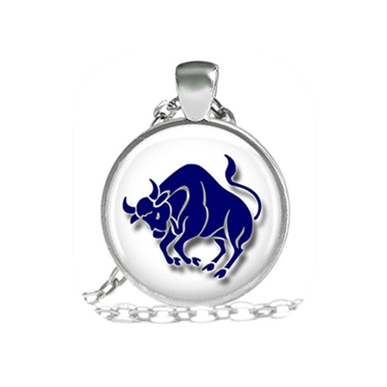 42ba8a9c8 Get Quotations · Taurus Zodiac Astrology Sign Necklace Astrology Taurus  Bull Necklace, Zodiac Taurus Pendant Gift