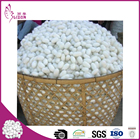 Factory wholesale natural dry double silk cocoon