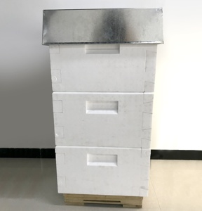 New designed 10 frame solid polystyrene foam beehive for beekeeping Made in China