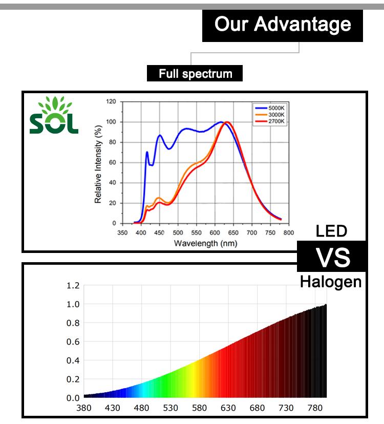 Custom SMD 3030 CV DC 6V LED Module Light for Microscope