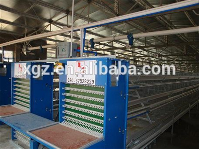 prefab cheap automatic poultry feeding system