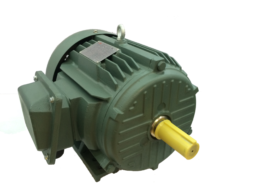 Nema Premium Efficient Induction Electric Motors Made In