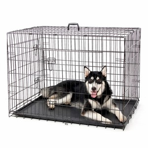Speedypet Multiple Sizes Pet Kennel Cage Heavy Duty for Sale Cheap Metal Foldable Stainless Steel Dog Cage