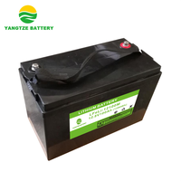 5000 cycles life 12v 100ah lithium polymer iron phosphate battery pack