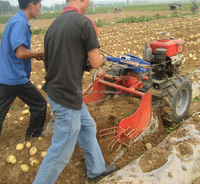 Single-row potato harvester machine for sale