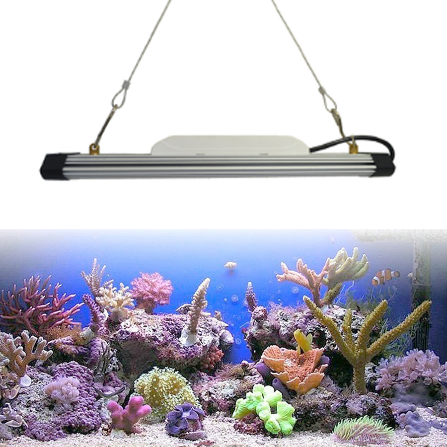 Virified China Leverancier Rood Blauw Wit LED Aquarium Lamp 6000 K Koud Wit Led Aquarium Licht Bar voor Fish Tank en Aquatische Plant