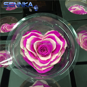 Wholesale Preserved Rose Heart Shape Rose With Gift Box