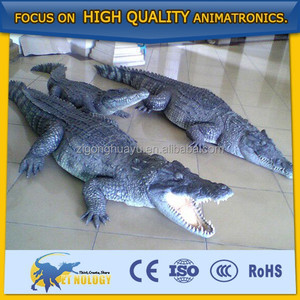 Cetnology Ocean Park robotic artificial animal model crocodile