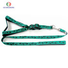 Hot New Dog Pet Accessories Products Nylon Dog Lead Collars and Leashes for Outdoor Activities