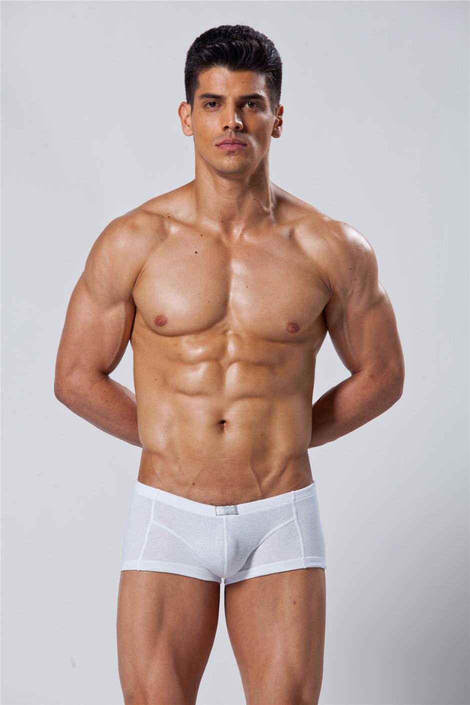 gay muscular men