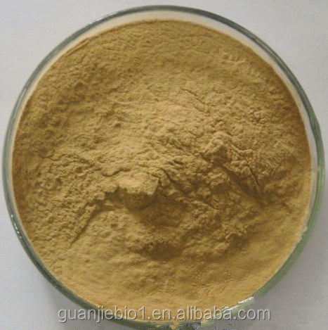 Factory Price Natural Fenugreek Seed Extract/Fenugreek Powder