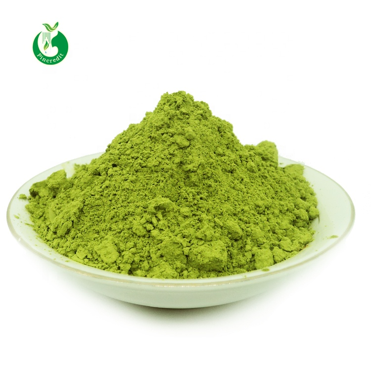 Top Quality Organic Matcha Green Tea Powder with Best Price - 4uTea | 4uTea.com