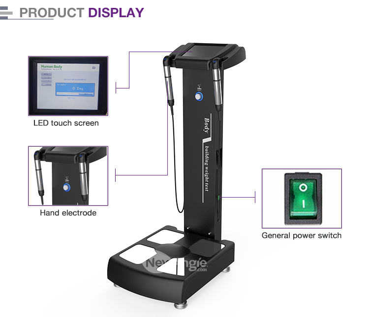 Professional GS6.5 human-body elements body composition analyzer