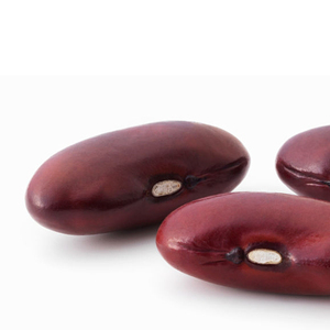 Red Kidney Bean Cheap Price