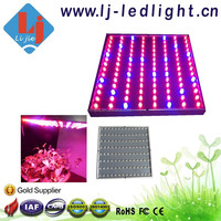 Top Rated LED Plant Growing Light 50W LED Grow Light Full Spectrum for Tissue Culture Hydroponic System Commercial Grow