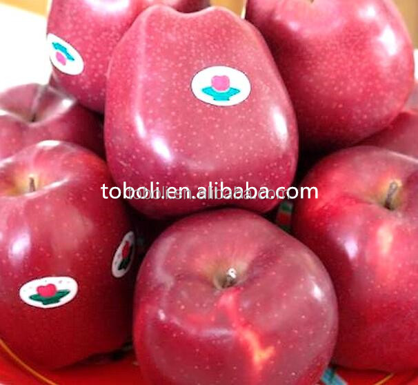 2016 new fresh 10kg packing red huaniu apples fruits