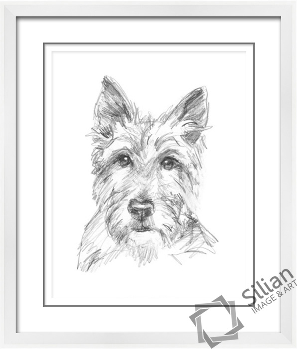 Terbaru Hitam Dan Putih Hewan Pensil Sketsa Lukisan Buy Anjing
