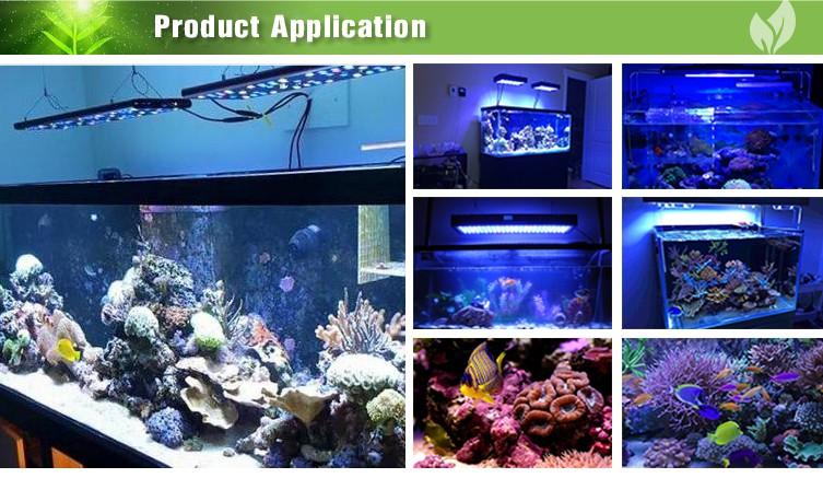 Waterproof Led Aquarium 120 Cm For Reef Artificial Decoration Led Aquarium Lamp Aquarium Lighting Buy Waterproof Led Aquarium 120 Cm Led Aquarium
