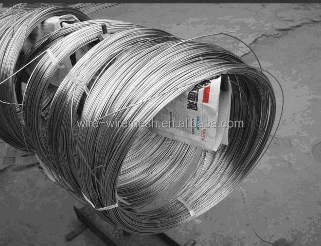 Galvanzied Brush Wire/Cleaning Ball Wire