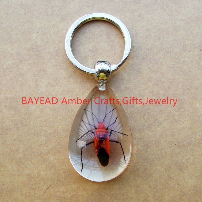 Positive Feedback is very important to us.Pls contact us before you leave  Neutral or Negative feedback About Real Red Bug Clear Resin Keychains ... 23fee62a16ee