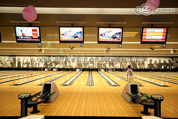 Brunswick Gsx Bowling Refurbished Machine Set Synthetic Bowling Lanes - Buy  Glow Bowling Lane,Bowling Spare Parts,Brunswick Bowling Lane Equipment