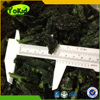 Top Sale Chinese IQF Frozen Spinach Cut Vegetables From Manufacture