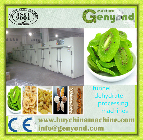 Fruit And Vegetable IQF frozen line / food freezing production line