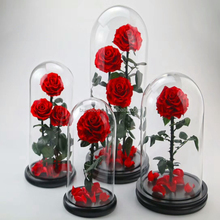 long lasting Yunnan grade A 9-10 big red flower preserved rose glass dome long stem nature real flower