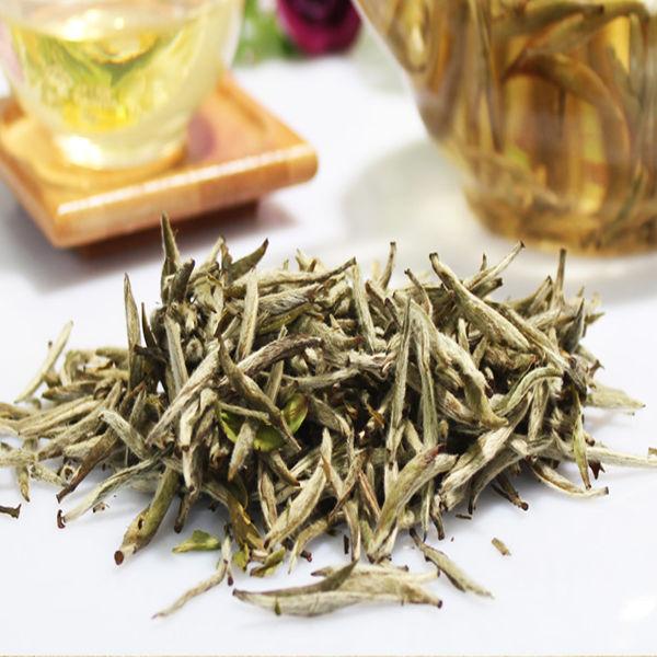 Organic and Famous Brand White Tea,Silver Needles White Tea - 4uTea   4uTea.com