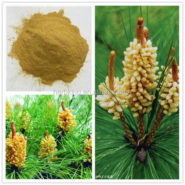 100% pure natural Pine Pollen powder 98%Broken cells