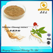 panax Ginseng extract with high quality