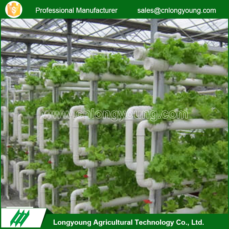 Commercial greenhouses structure with hydroponic system