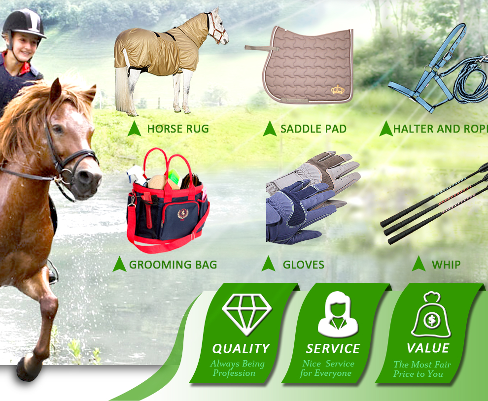 Changzhou Horse Whisper Trading Corp