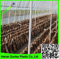 supply agricultural equipment waterproof film for greenhouse covering with best price